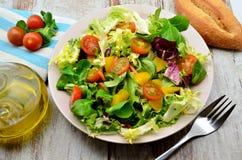 ντομάτες σαλάτας μαρουλιού Στοκ εικόνα με δικαίωμα ελεύθερης χρήσης