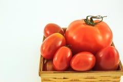 Ντομάτες σε ένα καλάθι στο άσπρο υπόβαθρο Στοκ εικόνα με δικαίωμα ελεύθερης χρήσης