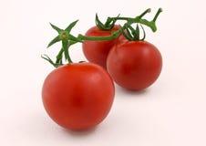Ντομάτες σε μια άσπρη ανασκόπηση στοκ εικόνα
