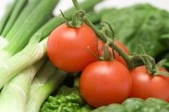 ντομάτες σπανακιού πράσων Στοκ εικόνα με δικαίωμα ελεύθερης χρήσης