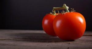Ντομάτες στην άμπελο Στοκ εικόνες με δικαίωμα ελεύθερης χρήσης