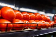 Ντομάτες στην υπεραγορά Στοκ φωτογραφία με δικαίωμα ελεύθερης χρήσης
