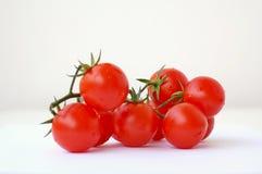 Ντομάτες στο άσπρο υπόβαθρο Στοκ Φωτογραφίες