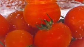 Ντομάτες στο νερό με τις αεροφυσαλίδες απόθεμα βίντεο