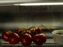 Ντομάτες τσίλι σε έναν κλάδο στο όμορφο φως στον αέρα στοκ φωτογραφία με δικαίωμα ελεύθερης χρήσης