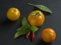 Ντομάτες, τσίλι και φύλλα βασιλικού Στοκ Εικόνες