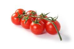 ντομάτες chery Στοκ Φωτογραφία