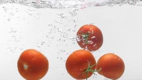Ντομάτες slo-κινήσεων που περιέρχονται στο νερό φιλμ μικρού μήκους
