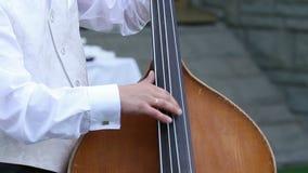 Ντουέτο των μουσικών απόθεμα βίντεο