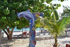 Ντους Κούβα παραλιών δελφινιών Στοκ Φωτογραφίες