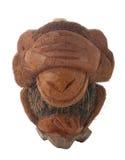 ντροπιασμένος πίθηκος Στοκ εικόνα με δικαίωμα ελεύθερης χρήσης
