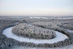 ντυμένο δασικό χιόνι Στοκ φωτογραφίες με δικαίωμα ελεύθερης χρήσης