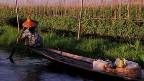 Ντόπιοι του Μιανμάρ που επιπλέουν σε μια βάρκα απόθεμα βίντεο