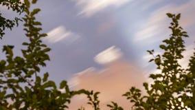 Νυκτερινά σύννεφα στον έναστρο ουρανό timelapse απόθεμα βίντεο