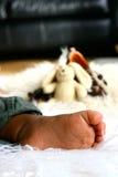 νυσταλέα toe Στοκ φωτογραφίες με δικαίωμα ελεύθερης χρήσης