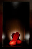νυφικά παπούτσια στοκ εικόνα