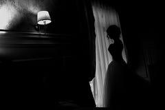 νυφικές γαμήλιες λευκές νεολαίες πέπλων πιτών εσθήτων νυφών Στοκ Φωτογραφίες