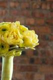 νυφικός ζωηρόχρωμος κίτρινος ανθοδεσμών Στοκ φωτογραφία με δικαίωμα ελεύθερης χρήσης