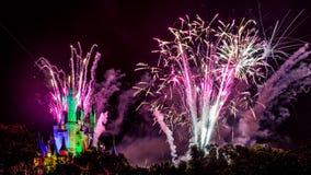 Νυχτερινά θεαματικά πυροτεχνήματα επιθυμιών Στοκ Εικόνα