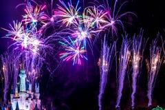 Νυχτερινά θεαματικά πυροτεχνήματα επιθυμιών Στοκ Εικόνες