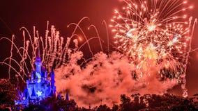 Νυχτερινά θεαματικά πυροτεχνήματα επιθυμιών Στοκ Φωτογραφία