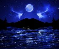 Νυχτερινός ουρανός Στοκ Φωτογραφίες