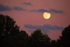 νυχτερινός ουρανός Στοκ Εικόνες