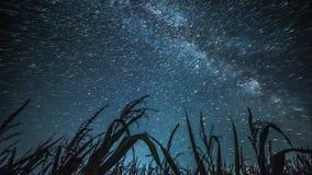 Νυχτερινός ουρανός timelapse