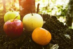 Νωποί καρποί, διάφορα φρούτα, υγιή τρόφιμα, ξύλινος πίνακας, υπόβαθρο Bokeh στοκ εικόνες
