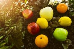 Νωποί καρποί, διάφορα φρούτα, υγιή τρόφιμα, ξύλινος πίνακας, υπόβαθρο Bokeh στοκ φωτογραφία με δικαίωμα ελεύθερης χρήσης