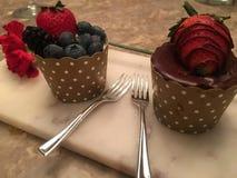 Νωποί καρποί και σοκολάτα cupcakes Στοκ φωτογραφίες με δικαίωμα ελεύθερης χρήσης