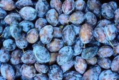 νωποί καρποί Μικτό υπόβαθρο φρούτων στις 12 Αυγούστου 2015 Στοκ φωτογραφίες με δικαίωμα ελεύθερης χρήσης