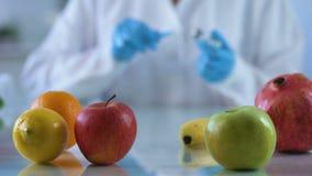 Νωποί καρποί στον ερευνητικό πίνακα, εργαζόμενος εργαστηρίων που αναπτύσσει την ουσία βιταμινών, τρόφιμα ΓΤΟ απόθεμα βίντεο