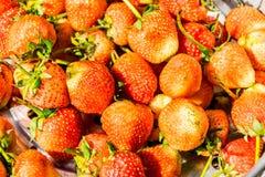 Νωποί καρποί φραουλών, ημέρα βαλεντίνων Στοκ Εικόνες