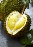 Νωποί καρποί, Durian Στοκ εικόνα με δικαίωμα ελεύθερης χρήσης