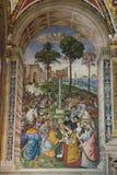 Νωπογραφίες τοίχων στο biblioteca Piccolomini του καθεδρικού ναού της Σιένα Duomo, Σιένα, Τοσκάνη, Ιταλία στοκ φωτογραφία με δικαίωμα ελεύθερης χρήσης