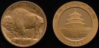 Νόμισμα αμερικανικών χρυσό Buffalo εναντίον Χρυσό Panda νόμισμα της Κίνας Στοκ εικόνες με δικαίωμα ελεύθερης χρήσης