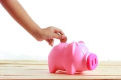 Νόμισμα κοριτσιών χεριών στο piggy χοίρο Στοκ Φωτογραφίες