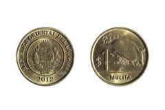 Νόμισμα Ουρουγουανών πέντε πέσων Στοκ Εικόνες