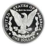 Νόμισμα δολαρίων του Morgan στοκ εικόνα με δικαίωμα ελεύθερης χρήσης