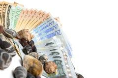Νόμισμα στο άσπρο υπόβαθρο Στοκ Φωτογραφία