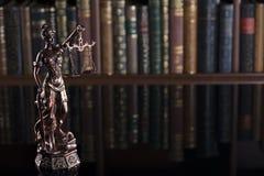 Νόμος βιβλιοθήκη δικαστηρίων θέματος †« στοκ εικόνες