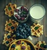 Νόστιμα δημητριακά με τα σμέουρα και βακκίνια στο μπλε υπόβαθρο Γκοφρέτες και γάλα στοκ φωτογραφίες
