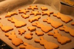 Νόστιμα μπισκότα Στοκ φωτογραφίες με δικαίωμα ελεύθερης χρήσης