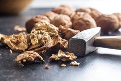 Νόστιμα ξηρά ξύλα καρυδιάς και σφυρί Στοκ Εικόνες