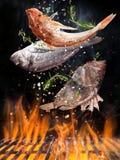 Νόστιμα ψάρια που πετούν επάνω από τη σχάρα χυτοσιδήρου με τις φλόγες πυρκαγιάς στοκ εικόνες