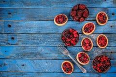 Νόστιμα tartlets με τα φρέσκα μούρα Στοκ εικόνα με δικαίωμα ελεύθερης χρήσης