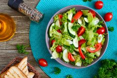Νόστιμη διαιτητική σαλάτα βιταμινών με τα φρέσκα αγγούρια, ντομάτες, πράσινα Σαλάτα από τα οργανικά λαχανικά r στοκ φωτογραφίες