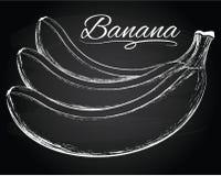 Νόστιμη διανυσματική απεικόνιση μπανανών Στοκ φωτογραφία με δικαίωμα ελεύθερης χρήσης