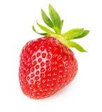 Νόστιμη φράουλα που απομονώνεται στο άσπρο υπόβαθρο Στοκ φωτογραφία με δικαίωμα ελεύθερης χρήσης